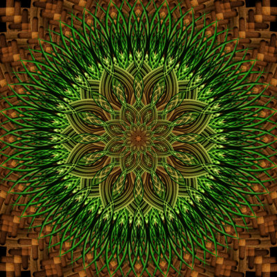 Earth Mandalas